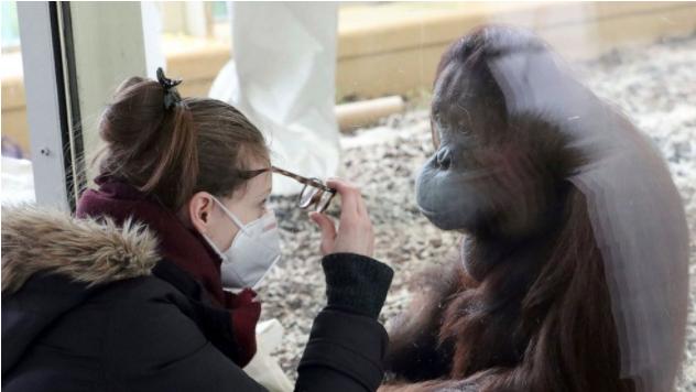 动物园,科学家们的目标