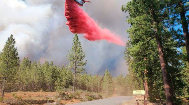 西部野火:加州大火横穿内华达州